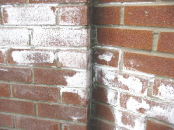 Efflorescence On Brick